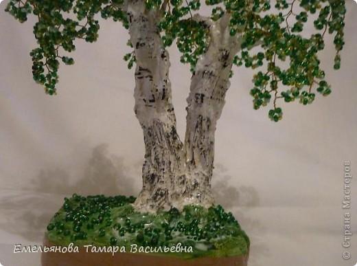 Это дерево я сделала на День рождение своей сестренке. До этого все мои сделанные деревья были одноствольные. Мне давно хотелось сделать двухствольную березку, и вот наконец моя мечта сбылась. фото 5