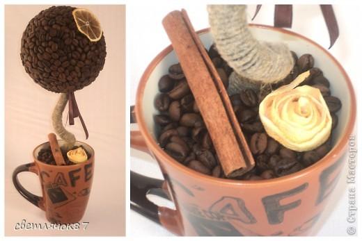 """покажу некоторые работы одного из последних своих увлечений Топиарий """"Кофейный"""" фото 3"""