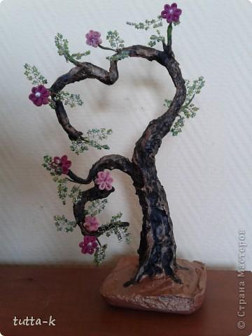 """""""Сердечное"""" дерево фото 2"""