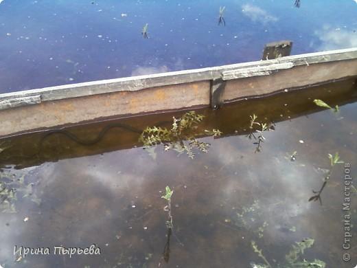 Ну вот мы и дождались!Вода сошла!!!Затопило нас 30 апреля,проехать мы смогли только 20 мая,автобусы правда пустили накануне 19...Присмотритесь,на стекле полоса-вода стояла на этом уровне больше двух недель.... фото 8