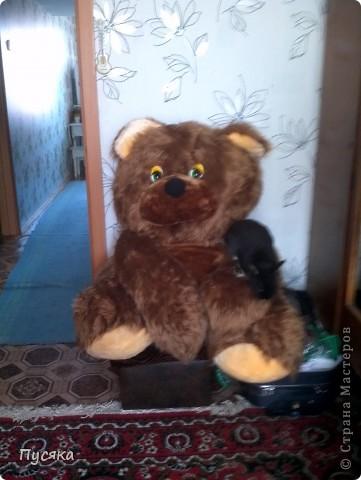 Это мой медведь. Я сшила его сама! фото 2