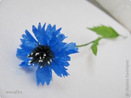Синее небо упало на луг, Синим, пресиним всё стало вокруг, На лугу расцвели, у синей реки, Как синие небо, цветки – васильки Н. Маслей  Решила я как-то васильки сделать и начала в интернете всю информацию собирать. В итоге сделала свои цветочки, используя идеи разных авторов. Предлагаю МК, может кому-то пригодится фото 2