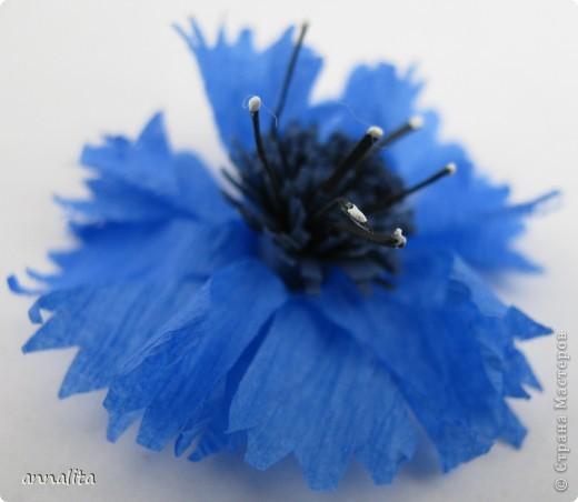 Синее небо упало на луг, Синим, пресиним всё стало вокруг, На лугу расцвели, у синей реки, Как синие небо, цветки – васильки Н. Маслей  Решила я как-то васильки сделать и начала в интернете всю информацию собирать. В итоге сделала свои цветочки, используя идеи разных авторов. Предлагаю МК, может кому-то пригодится фото 1