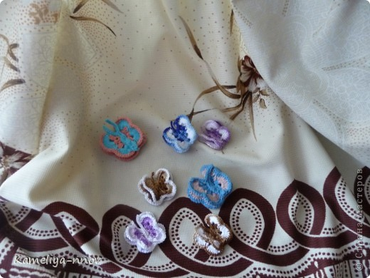 Бабочки фото 1