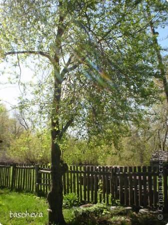 Деревенька моя. фото 4