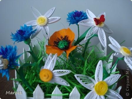 Всем здравствуйте! Очень мне понравились заборчики с цветами у  Витапро http://stranamasterov.ru/user/98067. Подвернулся и повод (день рождения у свекрови). Вот что из этого получилось. фото 3
