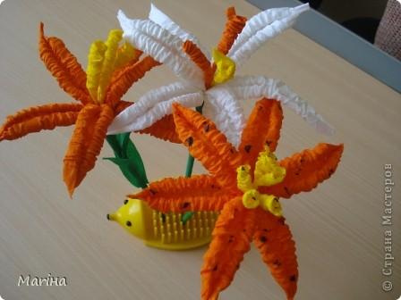 Всем здравствуйте! Лето - пора цветов, вот и у нас расцвели лилии, а заодно и научились делать гофротрубочки. Дошкольники решили сделать белые лилии. фото 2