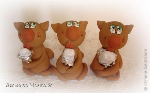 Кот с мороженым фото 3