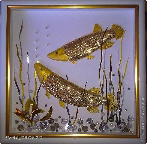 """Зравствуйте все. кто зашел на мою страничку. Мне заказали сделать в подарок рыбу аровану, используя в своей работе только три цвета: золотой, серебряный, белый. Трудно было передать эту рыбу в квиллинге, вот и """"натворила"""". Сначала спомощью папье маше сделала основу. потом оклеивала пайетками, голова- из картона. покрашенного гуашью золотого цвета. Хвост и плавники- бумага, сложенная гармошкой. Украшена стразами. Глаза- страза, накленная на пайетку. Водоросли вырезала из фольги, склеенной в два слоя. на дне монетки, бусины. В окончательном варианте добавлены мелкие ракушки, тоже покрашенные гуашью. К сожаленью, не было возможности дофотографировать. фото 1"""