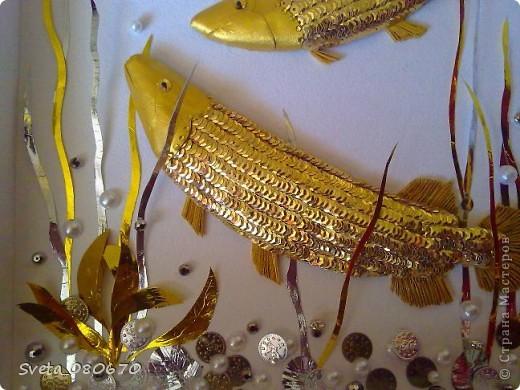 """Зравствуйте все. кто зашел на мою страничку. Мне заказали сделать в подарок рыбу аровану, используя в своей работе только три цвета: золотой, серебряный, белый. Трудно было передать эту рыбу в квиллинге, вот и """"натворила"""". Сначала спомощью папье маше сделала основу. потом оклеивала пайетками, голова- из картона. покрашенного гуашью золотого цвета. Хвост и плавники- бумага, сложенная гармошкой. Украшена стразами. Глаза- страза, накленная на пайетку. Водоросли вырезала из фольги, склеенной в два слоя. на дне монетки, бусины. В окончательном варианте добавлены мелкие ракушки, тоже покрашенные гуашью. К сожаленью, не было возможности дофотографировать. фото 3"""