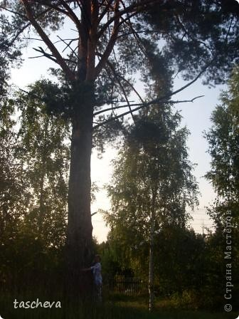 Деревенька моя. фото 12