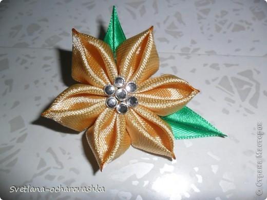 Цветики-семицветики №1 фото 6