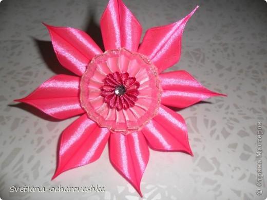 Цветики-семицветики №1 фото 5