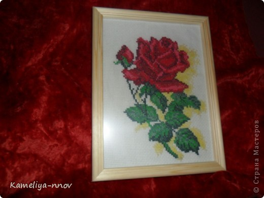 """Вышивка """"Алая роза"""" фото 1"""