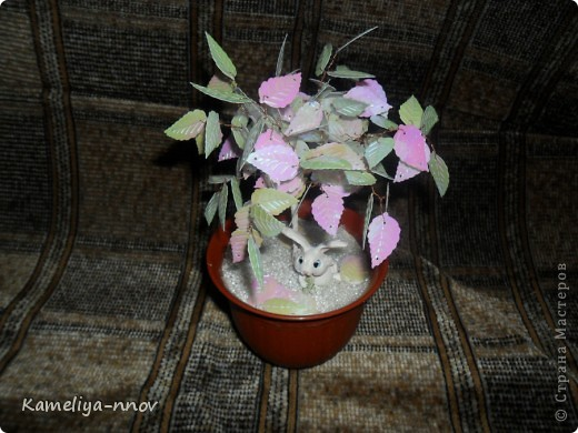 Зимний сад фото 1