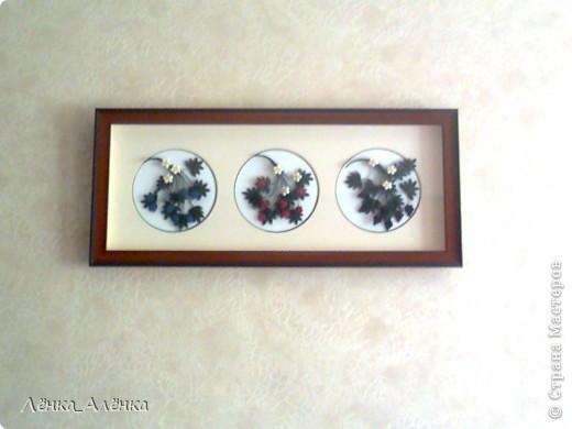 Мои ягодки украшают стену на кухне. фото 1