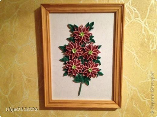 Повторяшки хризантемы