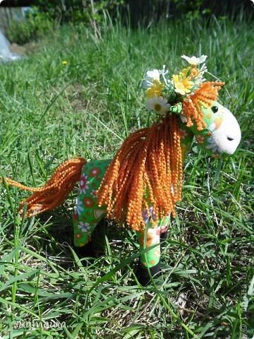 Здравствуйте, дорогие друзья!!!! Где- то промелькнула в интернете забавная лошадка, а так как я питаю страсть к этим прекрасным животным, решила создать свой домашний  табунчик.  фото 8