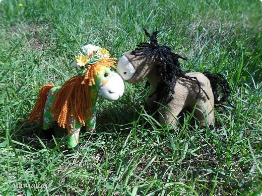 Здравствуйте, дорогие друзья!!!! Где- то промелькнула в интернете забавная лошадка, а так как я питаю страсть к этим прекрасным животным, решила создать свой домашний  табунчик.  фото 9