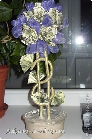 В качестве одного из подарков для гостей от жениха и невесты у нас будет денежное дерево Заранее прошу прощения за качество фото, т.к. делались они в ночное время суток на моем рабочем месте. фото 24