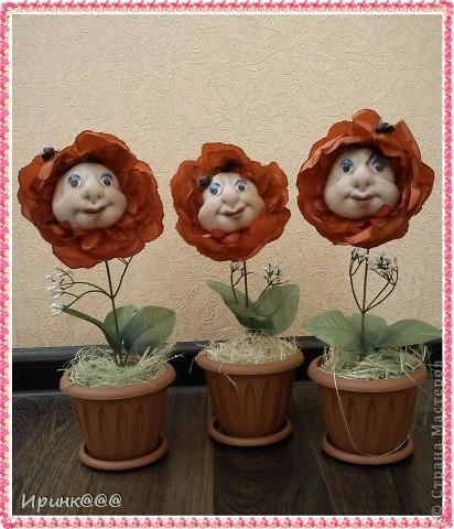 Вот такие первые цветы у меня выросли,и будут сюрпризом для моих подруг(редко собираемся все вместе, захотелось удивить)На самом деле цветы ярко красные и пчелок плохо видно(вот такой  я фотограф)