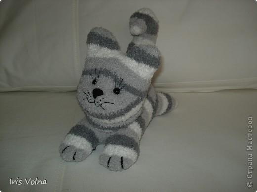 Дорогие мастерицы! Хочу показать свежесшитого котю. Он из махровых носков, поэтому такой упитанный. фото 1