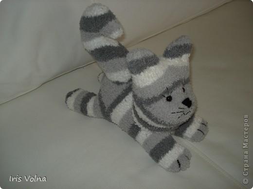 Дорогие мастерицы! Хочу показать свежесшитого котю. Он из махровых носков, поэтому такой упитанный. фото 2