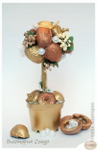 """Дерево """"Золотые орешки""""!!!"""