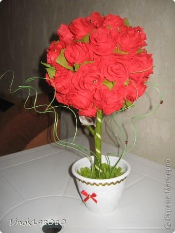 Цветок страсти фото 1