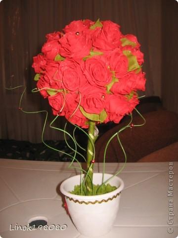Цветок страсти фото 4