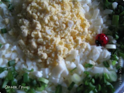 Вот такой замечательный салатик у нас получился. Вкусный и питательный. фото 10