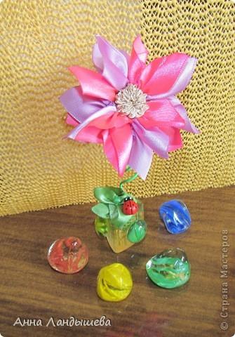 А у меня вот такие цветы-счастья! фото 10