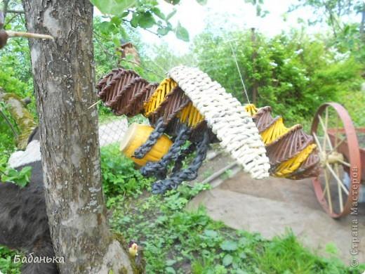 """Пчелы"""" вышли на охоту"""". фото 4"""
