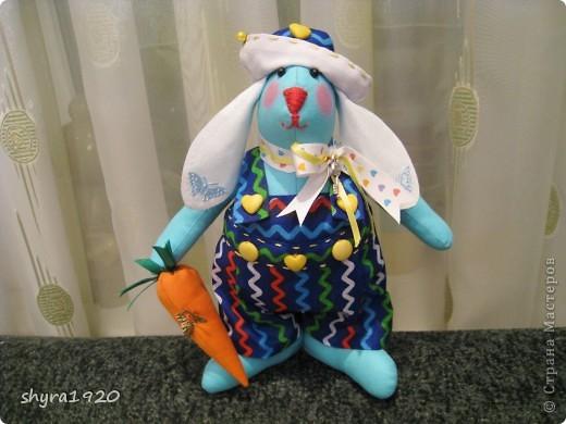 Это зайчик, которому я шила одежку с аистами и детками, мне не понравилось и  я его переодела, теперь они в паре с моим предыдущим голубым зайцем, просто братья красавцы. фото 5