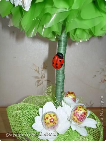 Решила сотворить ромашковое поле на дереве! фото 3