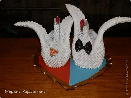 лебеди фото 1