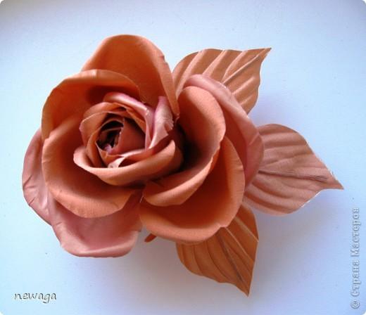 Роза в бежевых тонах фото 1