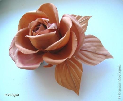 Роза в бежевых тонах фото 2
