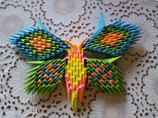 Скоро придёт лето. А у меня дома все ещё в зимней спячке. А вот эта бабочка напомнит нам о близких каникулах и будет радовать всех яркими цветами. фото 1