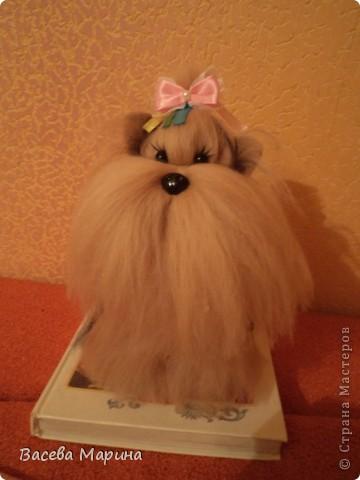 Куколка Настенька. фото 5