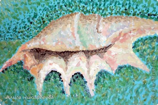 Ракушка в море фото 2