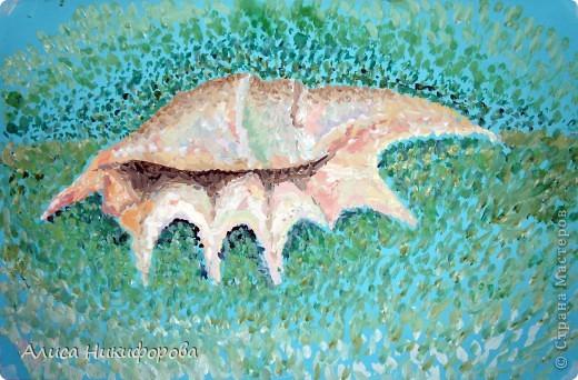 Ракушка в море фото 1