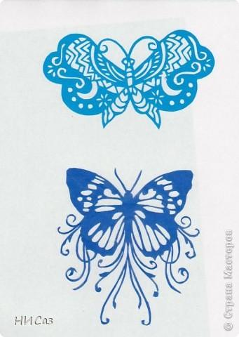 Вот и снова бабочки. фото 3