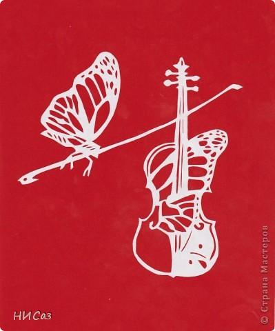 Вот и снова бабочки. фото 8