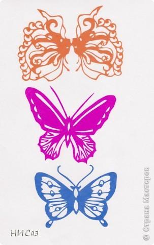 Вот и снова бабочки. фото 2