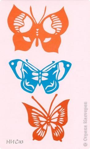 Вот и снова бабочки. фото 5