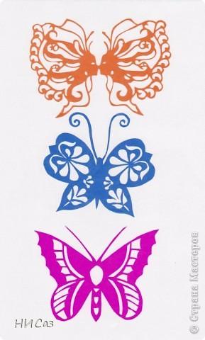 Вот и снова бабочки. фото 1