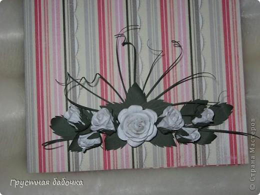 Белые розы фото 2