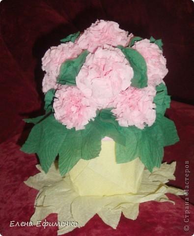 Это мои первые цветочки из салфеток (делала по МК Марии Кац). Поделку делала сынуле в садик. Надо было сделать цветы из бумаги- на помощь пришла Страна мастеров. Зашла и застряла.... фото 1