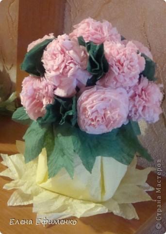 Это мои первые цветочки из салфеток (делала по МК Марии Кац). Поделку делала сынуле в садик. Надо было сделать цветы из бумаги- на помощь пришла Страна мастеров. Зашла и застряла.... фото 2